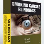 Cigarette plain packaging: Former health minister Nicola Roxon hails leaked WTO ruling